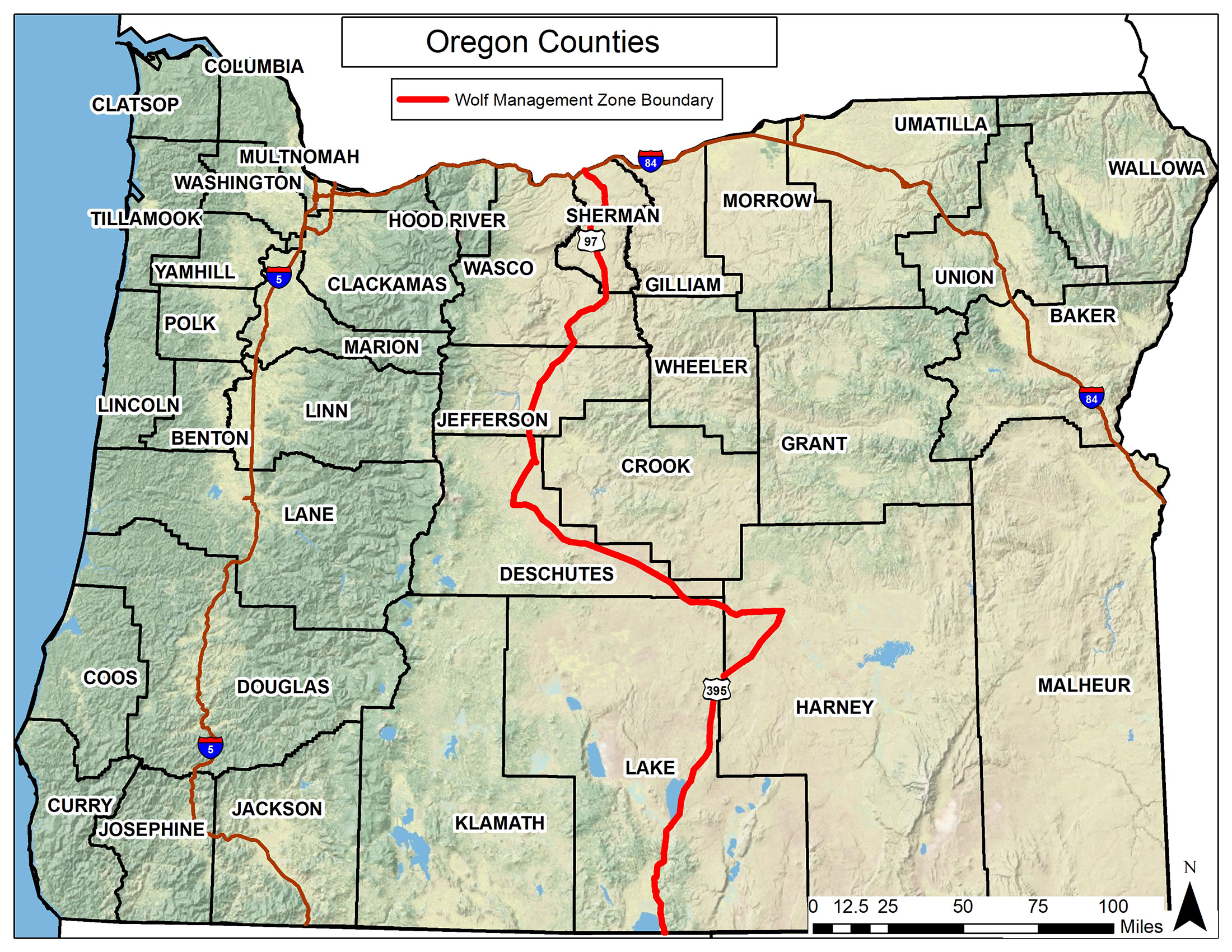 Specific Wolves And Wolf Packs In Oregon