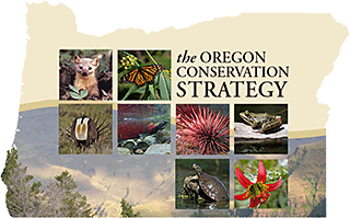 Oregon Conservation Strategy