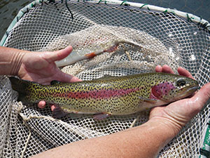 Family fishing event in grants pass for Odfw fish stocking