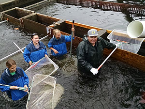 Salmon River Hatchery