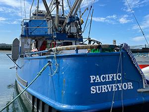 Pacific Surveyor